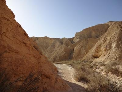 Desert_Neguev_christele_perrot